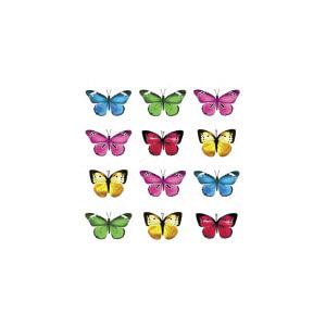 AG Butterflies