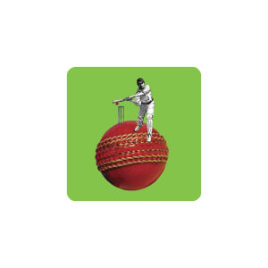 AG Cricket Ball and Player