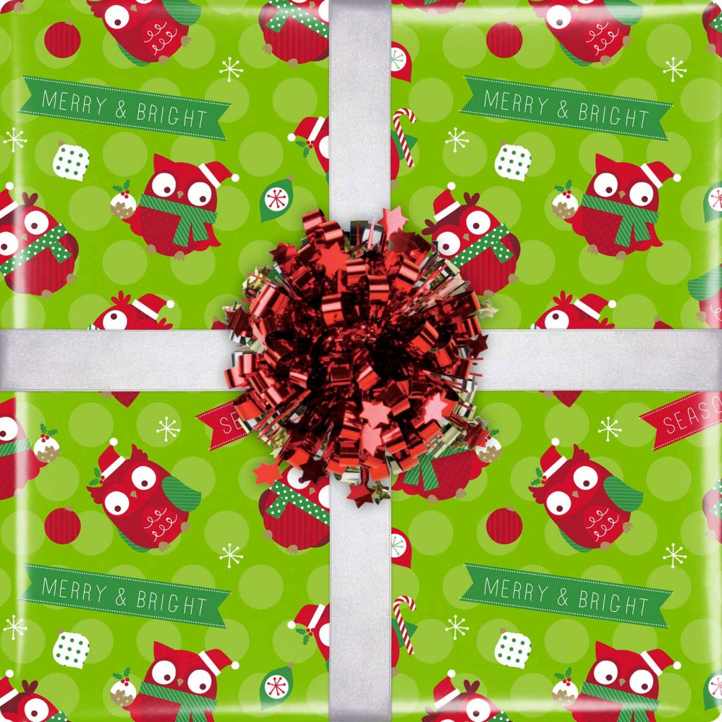GIFT WRAPPING PAPER WRAP CHRISTMAS OWLS VIS