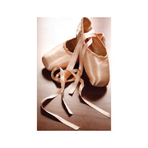 SNAPSHOTZ Ballet Shoes