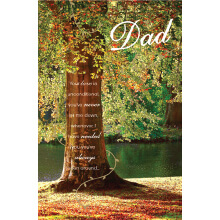 WHOLEHEARTEDLY DAD