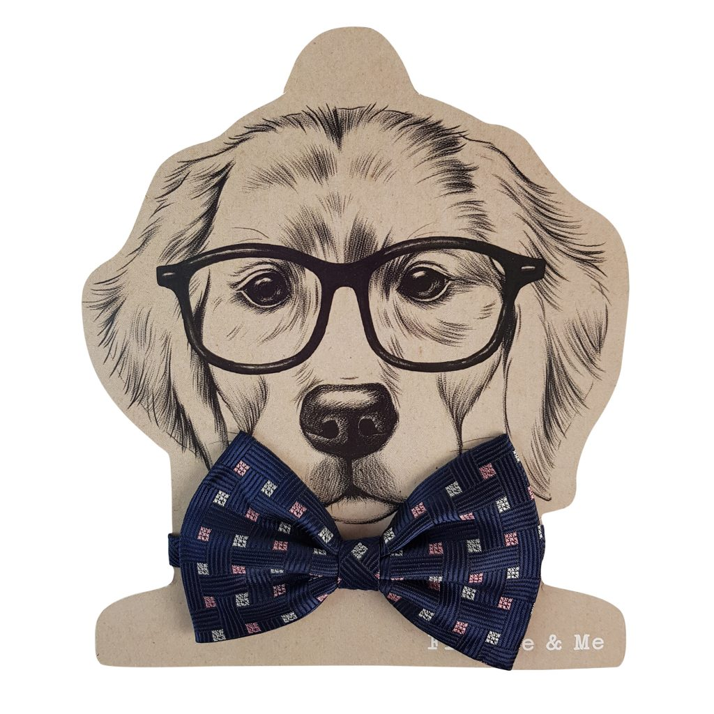 Frankie and Me Pet Accessories Blue Bowtie
