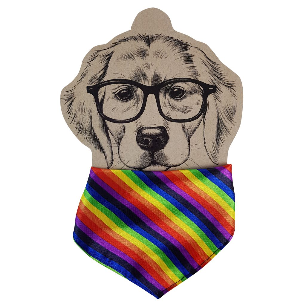 Frankie and Me Pet Accessories Rainbow Bandana