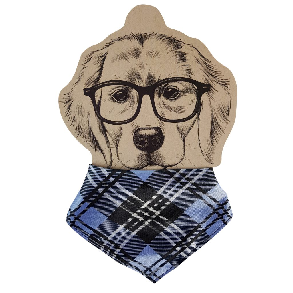 Frankie and Me Pet Accessories Tartan Bandana