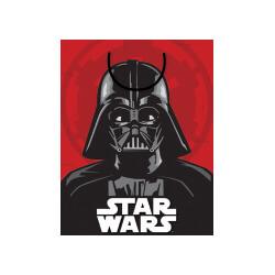 E1933 Star Wars Darth Vader Medium Bag