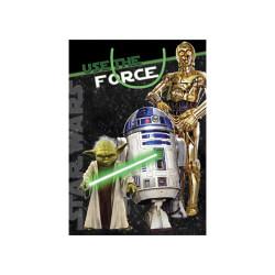 E1972 Star Wars Jumbo Yoda, R2D2 & C3PO