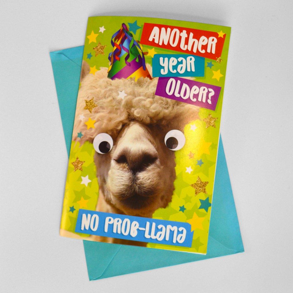 SOUND BITES Llama